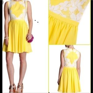Ted Baker Yellow white lace cocktail dress US 6